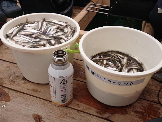 www.fishing-otsuka.co.jp つり具おおつか ブログ写真 2020/02/17