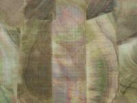 アワビ本舗 アワビシート -  中判 #黒蝶貝ナチュラル 約80mm×140mm
