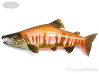 工房釣り具ササキ屋 ザ・リアルブローチ  #サクラマス婚姻色B 全長約90mm