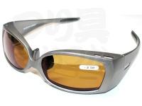 朝倉プラン バイフォーカル偏光サングラス - NS-003 #フレーム:マットシルバー レンズ:ブラウン NS-00330 +2.50