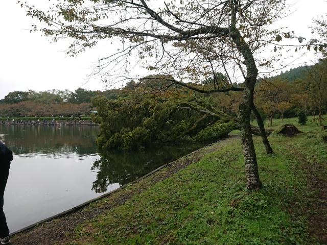 プロショップオオツカ・トラウト部門 ネット通信販売 ブログ写真 2019/10/22